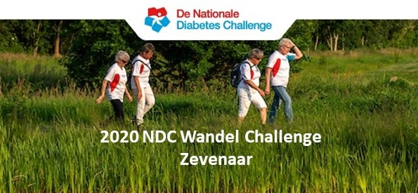 Diabetes Wandel Challence